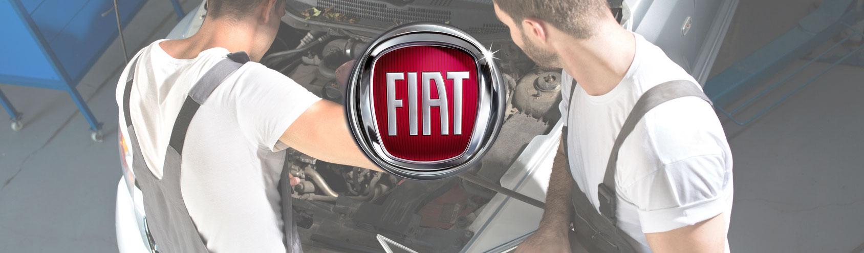 Assistenza FIAT Lucca