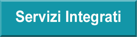 servizi integrati novara