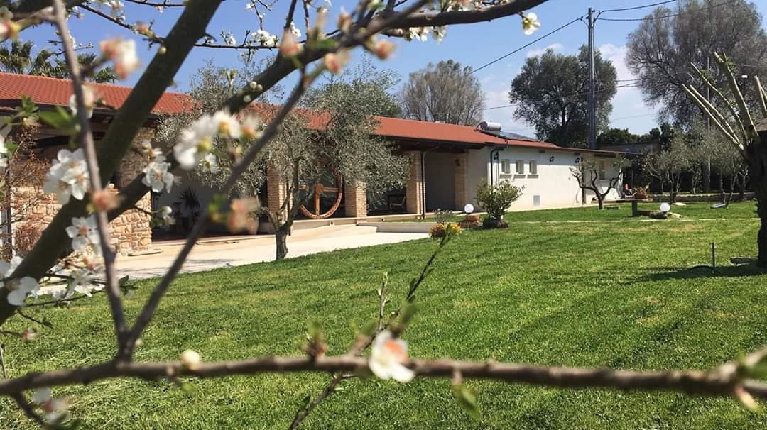 Agriturismo Masseria Adornato a Rizziconi Reggio Calabria