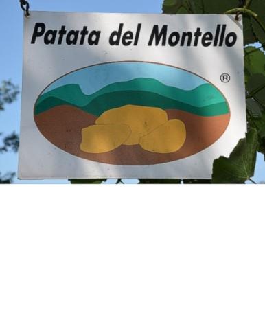 Azienda Agricola Busa Dea Messa Volpago del Montello (TV)