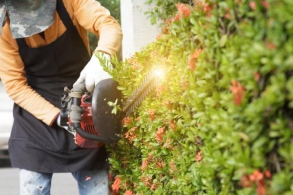 Lavori di giardinaggio su aree private e pubbliche a San Giovanni in Persiceto