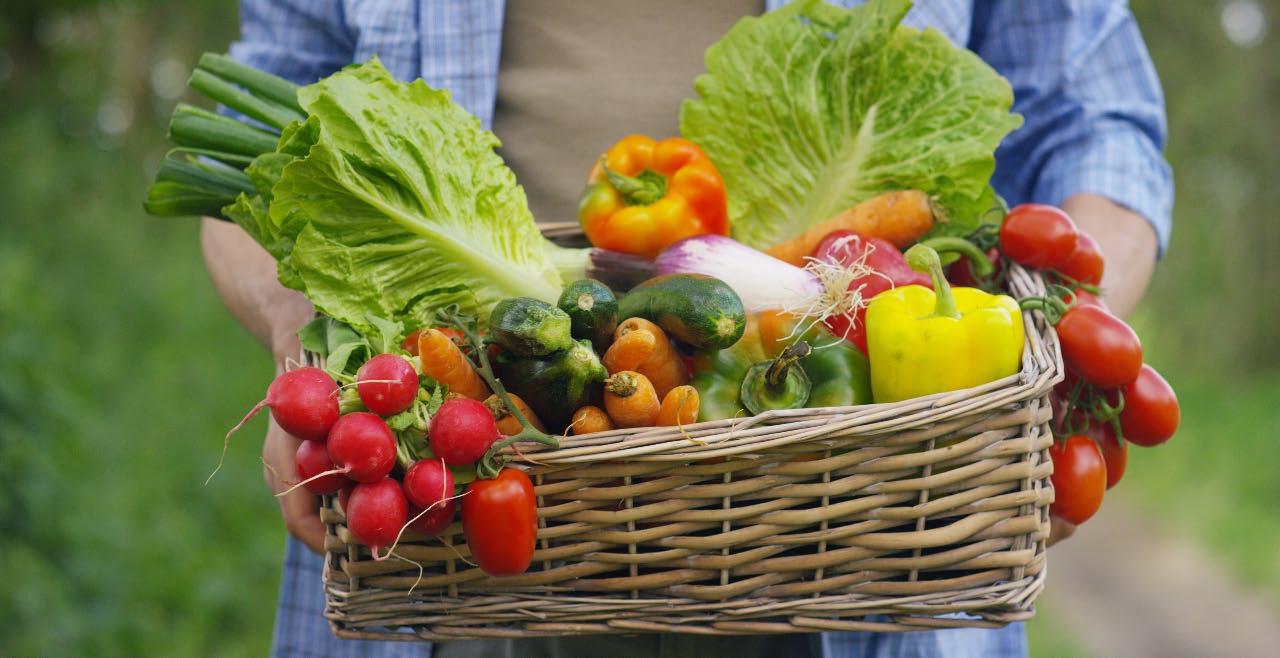 verdura fresca di stagione bio a Muggia