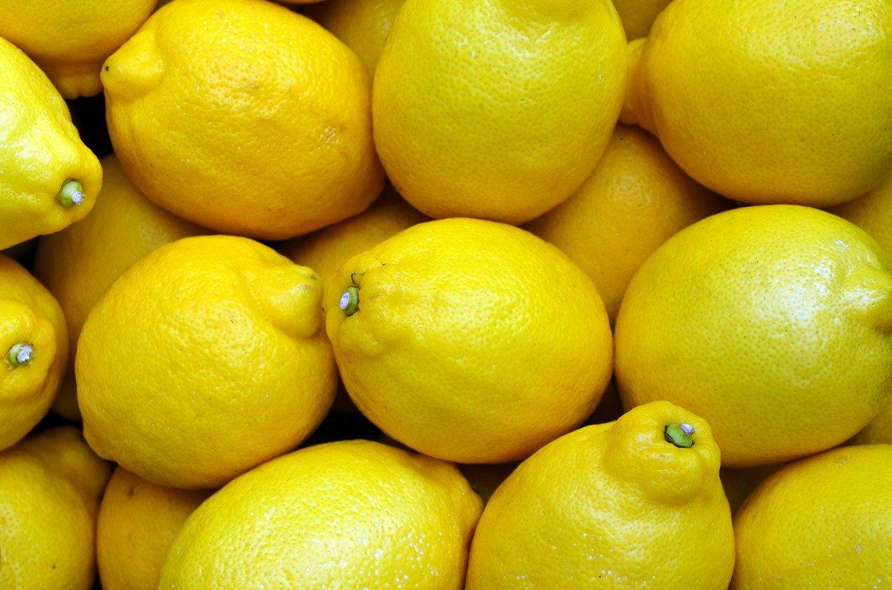 vendita frutta muggia
