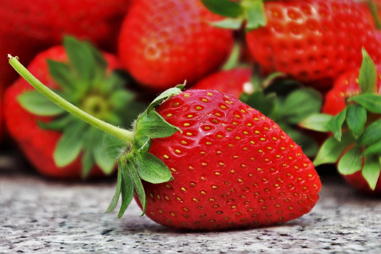 vendita frutta fresca muggia