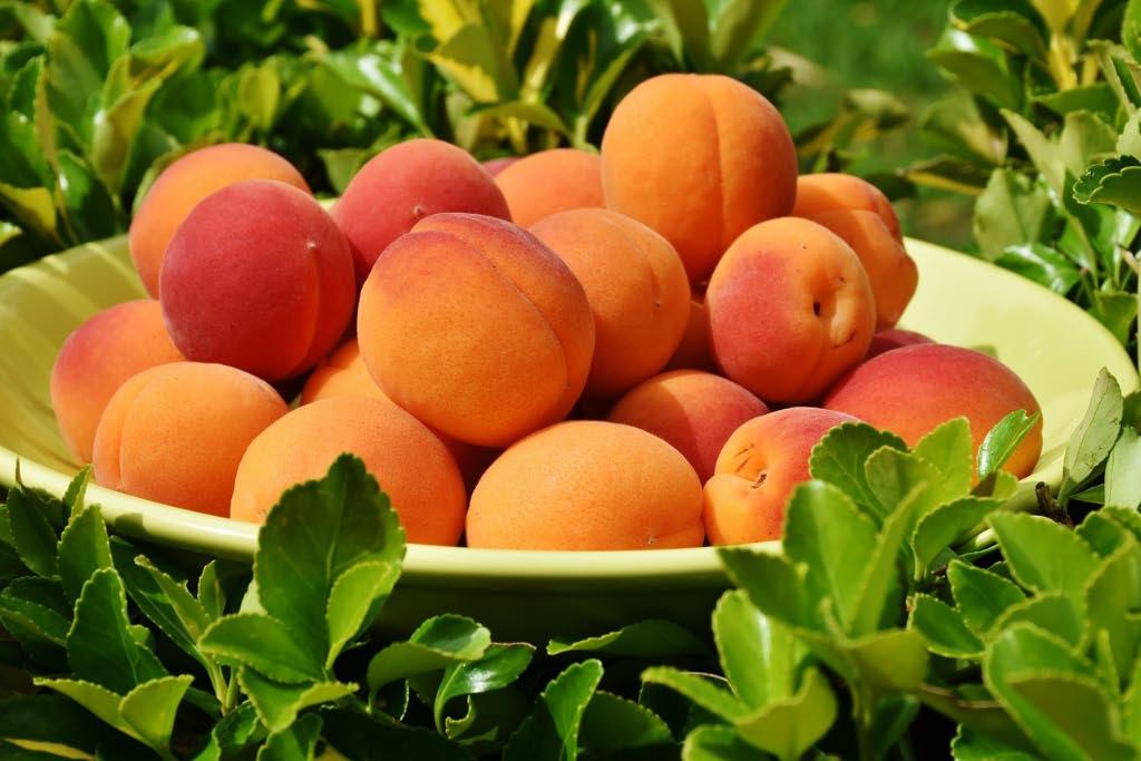 frutta primavera non trattata