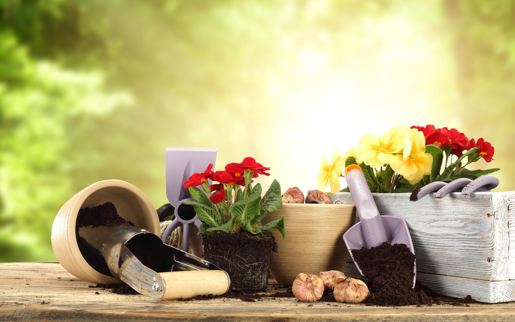 Prodotti biologici piante Tecnogreen