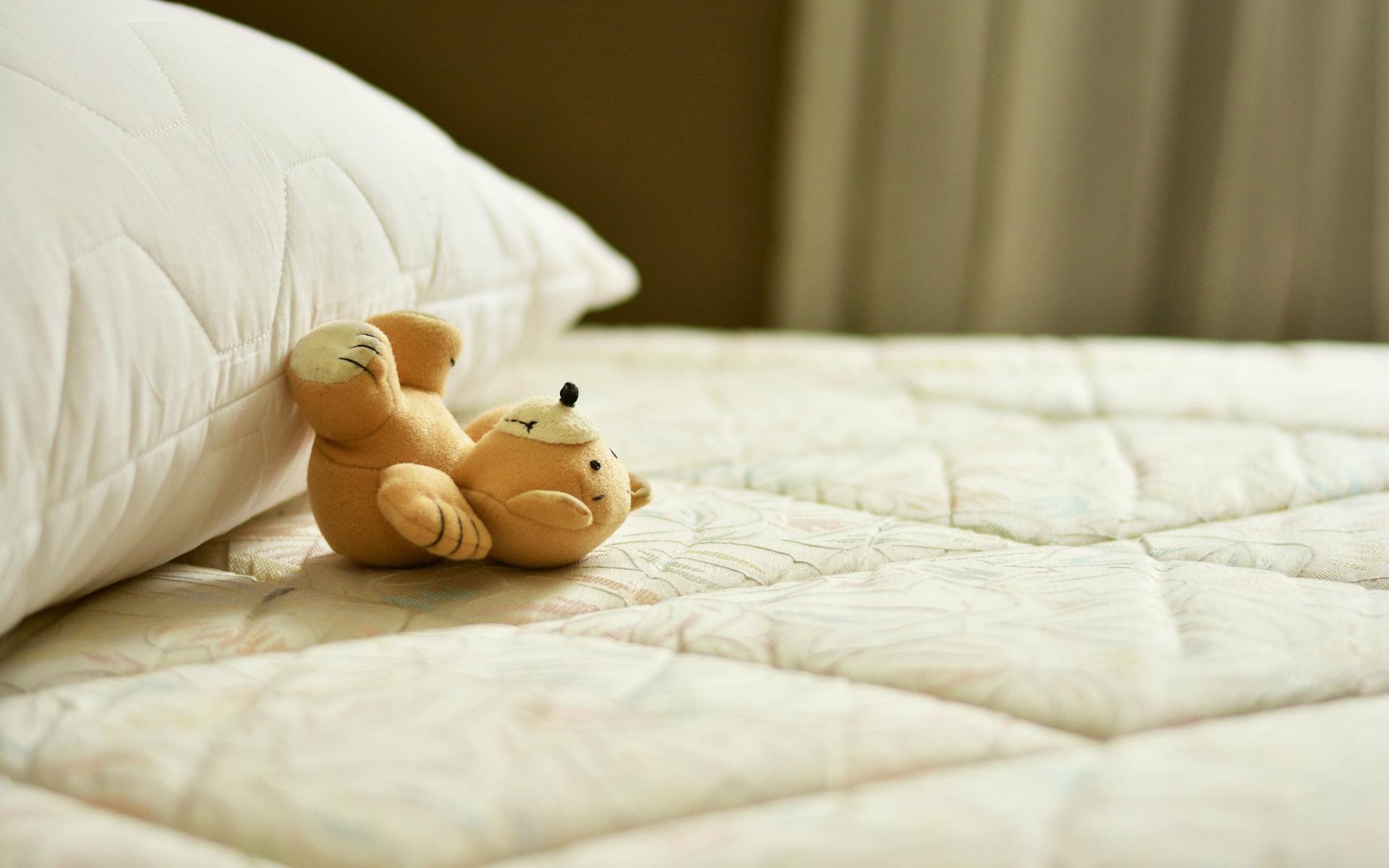Trapunta e cuscini coordinati