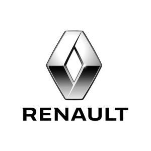 vendita renault a vercelli
