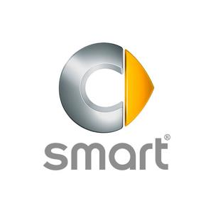 Vendita Smart a Vercelli