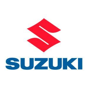 Occasioni Suzuki a vercelli