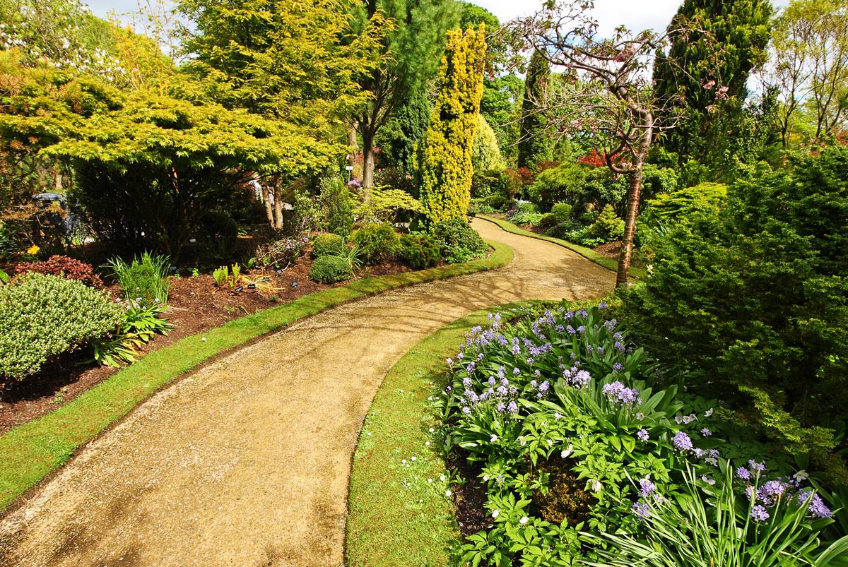 Cura di parchi e giardini