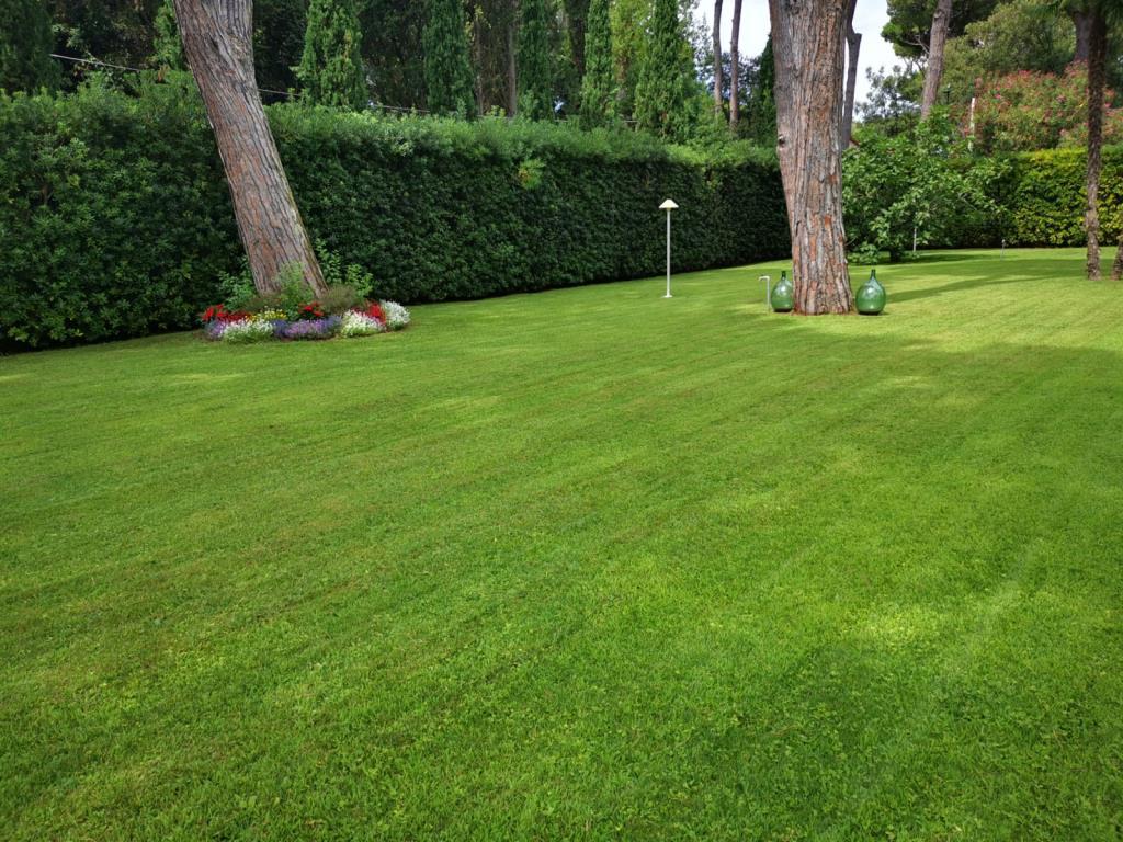 Giardinieri  per cura del verde