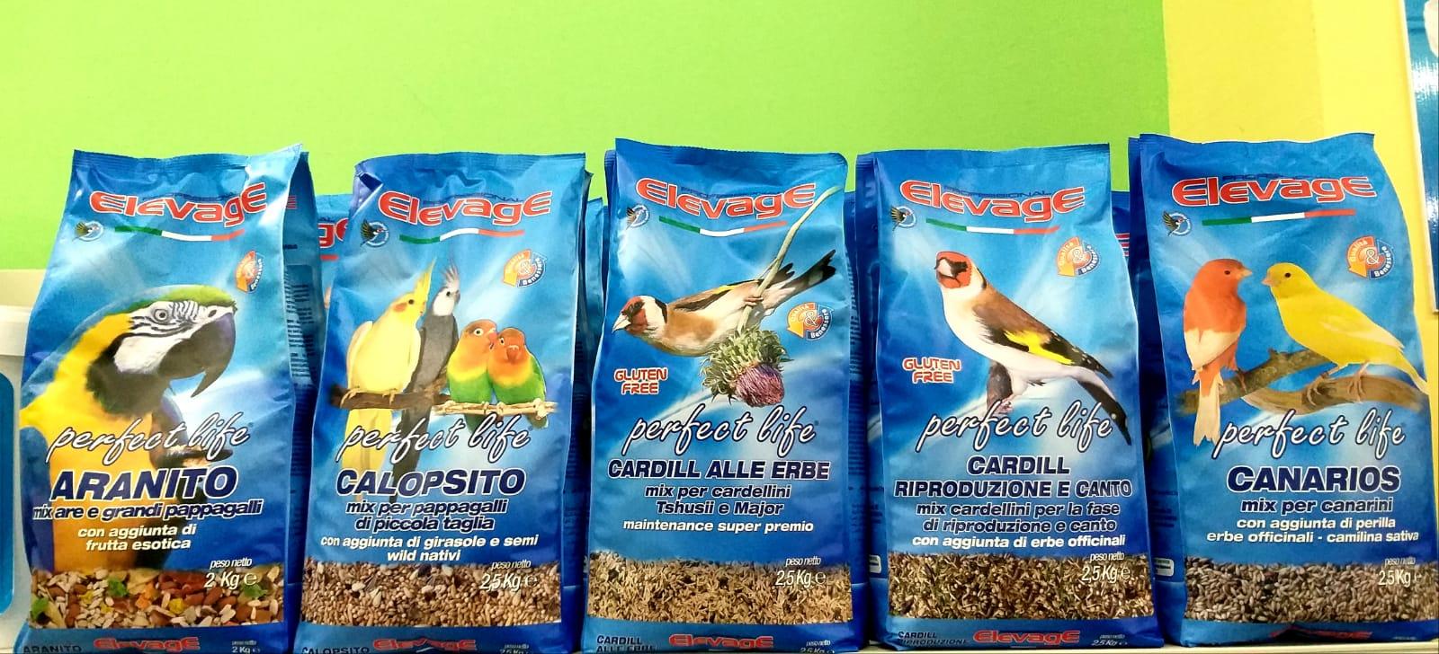 vendita mangimi per uccelli Leo Animali Polistena Reggio Calabria