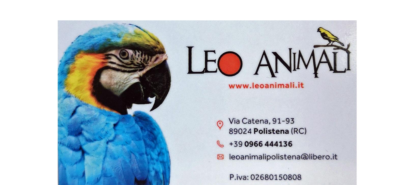 Leo Animali Polistena Reggio Calabria