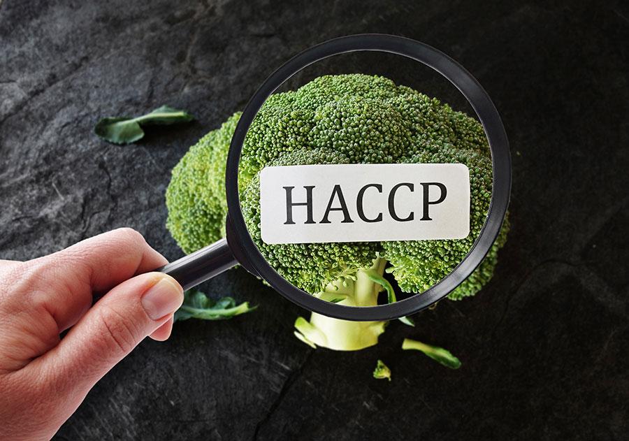 Formazione HACCP Messina