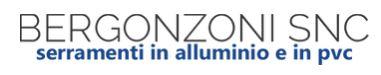 Logo Bergonzoni