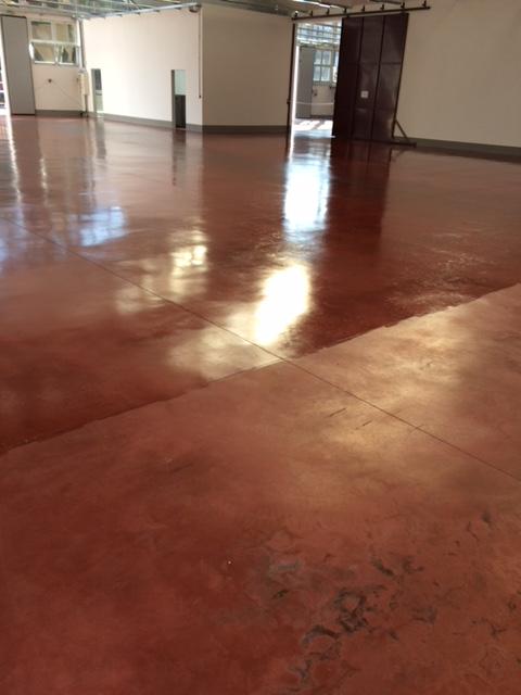 Lucidatura pavimento in cotto Scricciolo