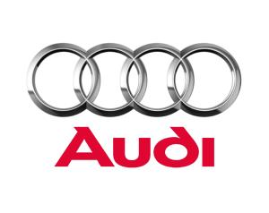 Auto usate e aziendali Audi