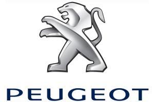 Vendita usato Peugeot