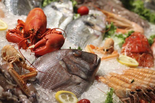 ristorante specialità di pesce a lucca