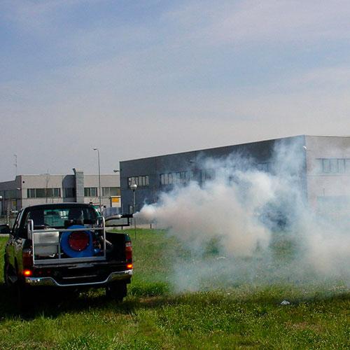 disinfestazioni industriali a roma