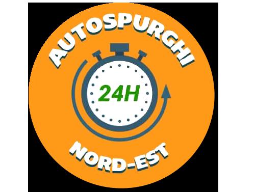 Autospurghi Nord Est VR