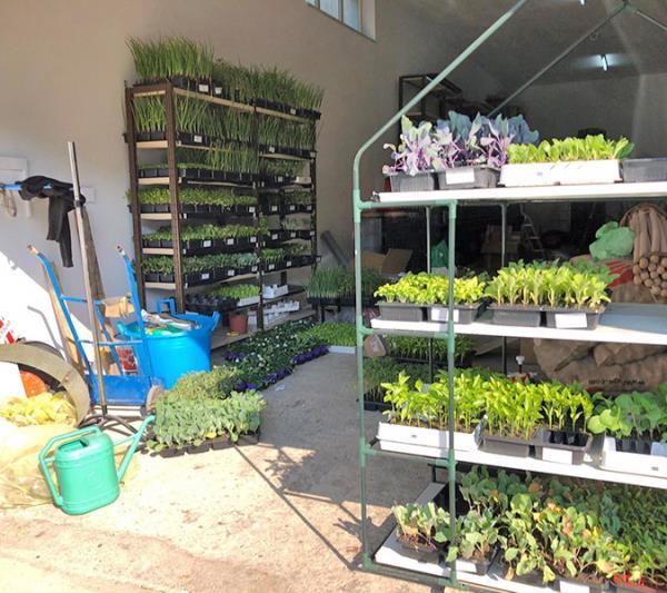 articoli giardinaggio Orani