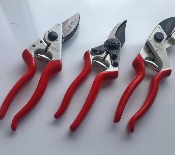 ferramenta Orani