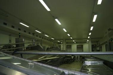ditta impianti elettrici Cremona