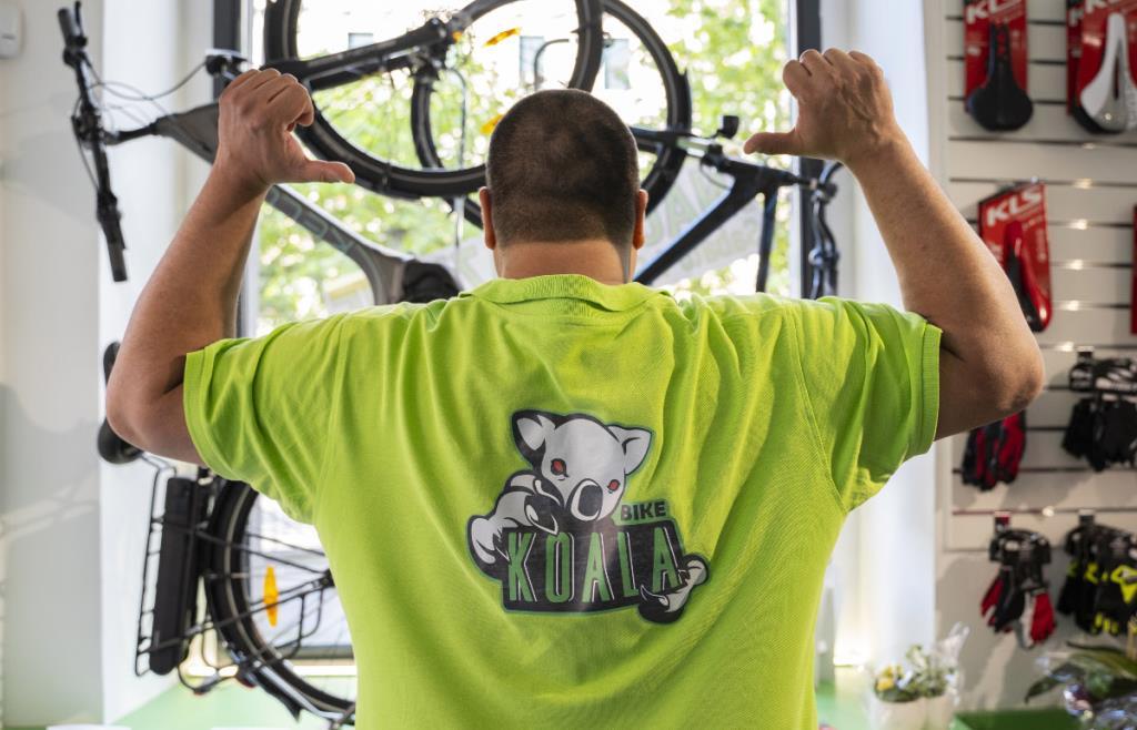 assistenza e riparazione biciclette Trieste