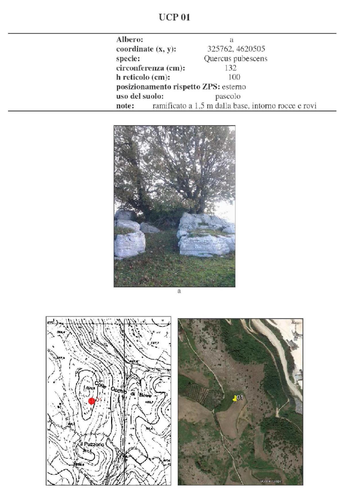 Scheda di biomonitoraggio lichenico
