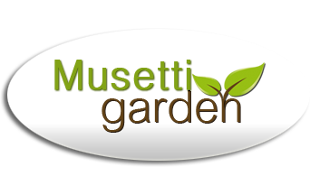 Musetti Garden