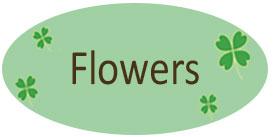 musetti garden flowers