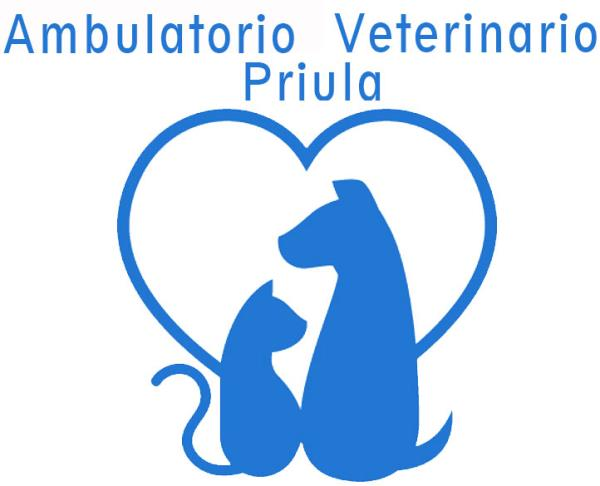 AMBULATORIO VETERINARIO PRIULA TV