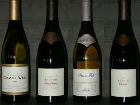 Enoteca Dalle Fusine, importazione e vendita vini – vendita online