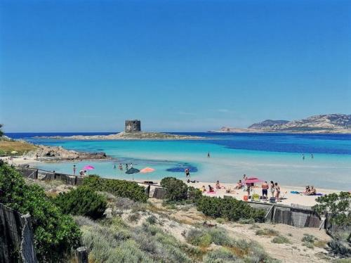 Stintino  Asinara
