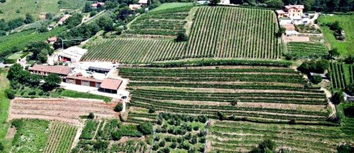 agriturismo con degustazione vini bergamo