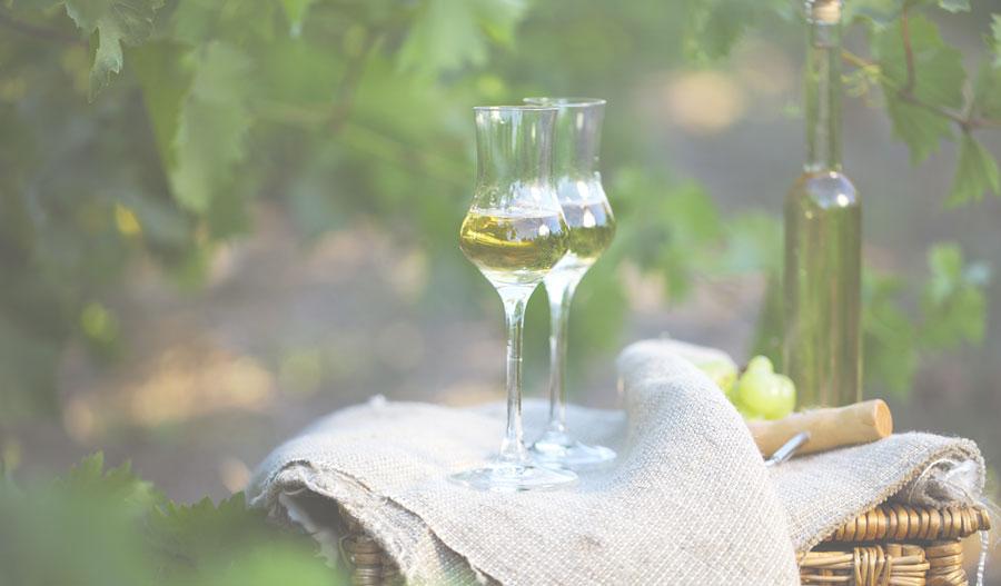 produzione vini passiti bergamo