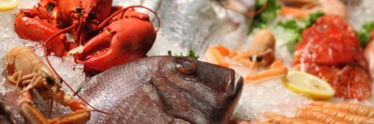 grigliate di pesce fiume veneto pordenone