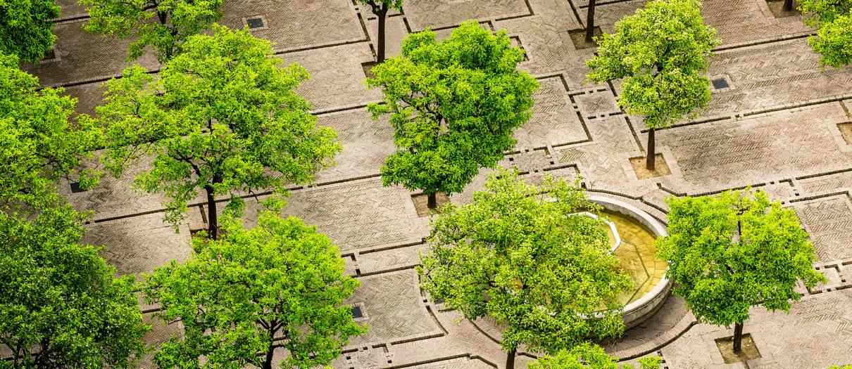 progettazione e manutenzione giardini verona