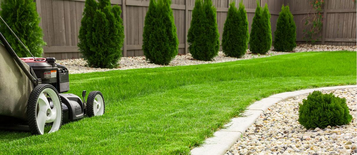 impresa giardinaggio verona