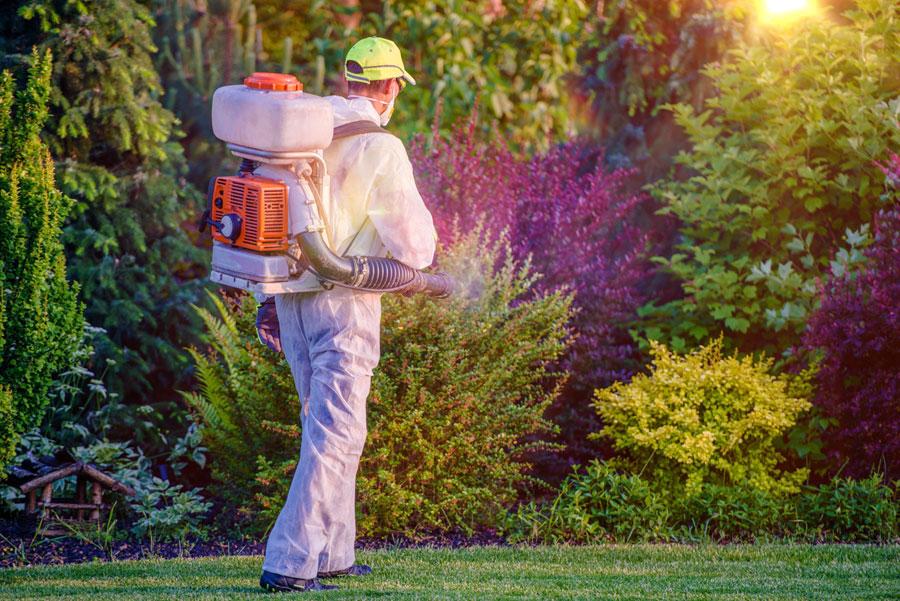trattamenti fitosanitari giardini verona