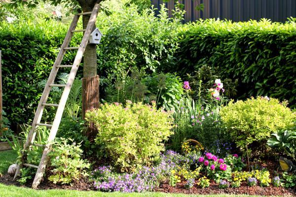 manutenzione e cura giardini verona