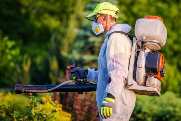 trattamenti fitosanitari verona