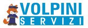 www.volpinigroupsrl.it