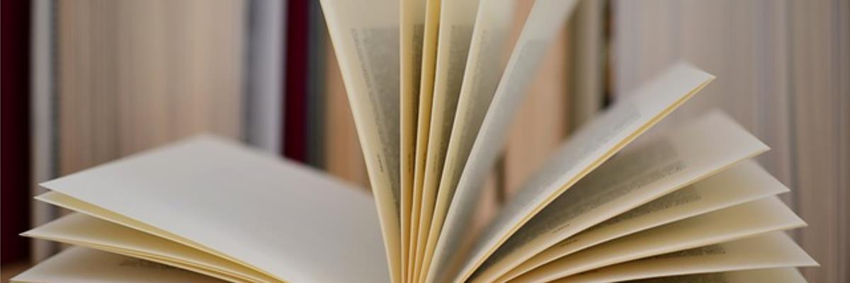 libreria siena