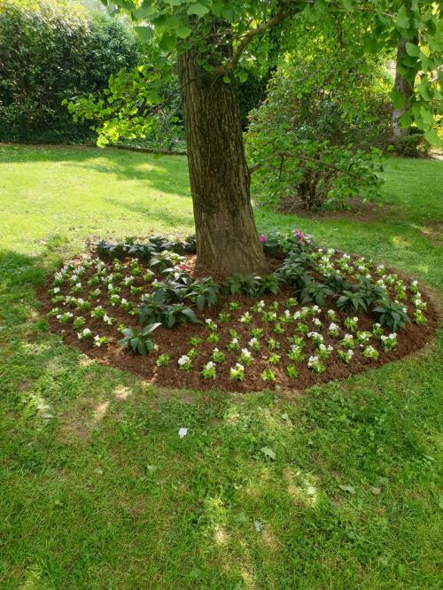 manutenzione giardini privati sommacampagna