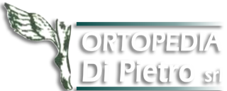 www.ortopediadipietro.it