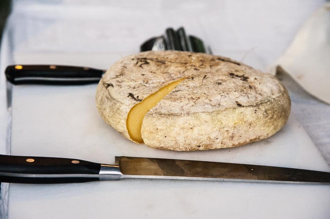 formaggi aromatizzati alle erbe agriturismo zabè gallura