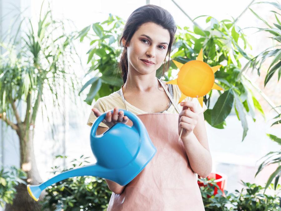 consulenza fiori e piante cassibile siracusa